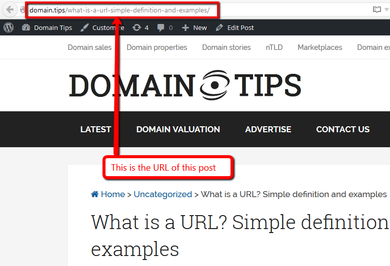 What is a URL? Simple definition and examples – Domain Tips