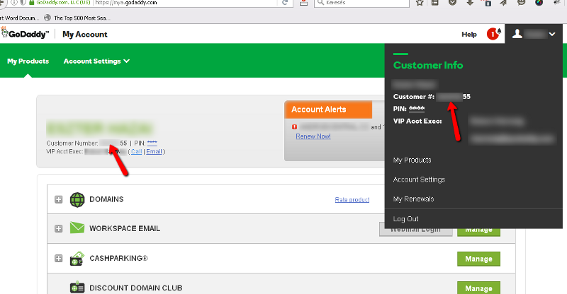 GoDaddy customer number is revealed right away after login (see red arrows)